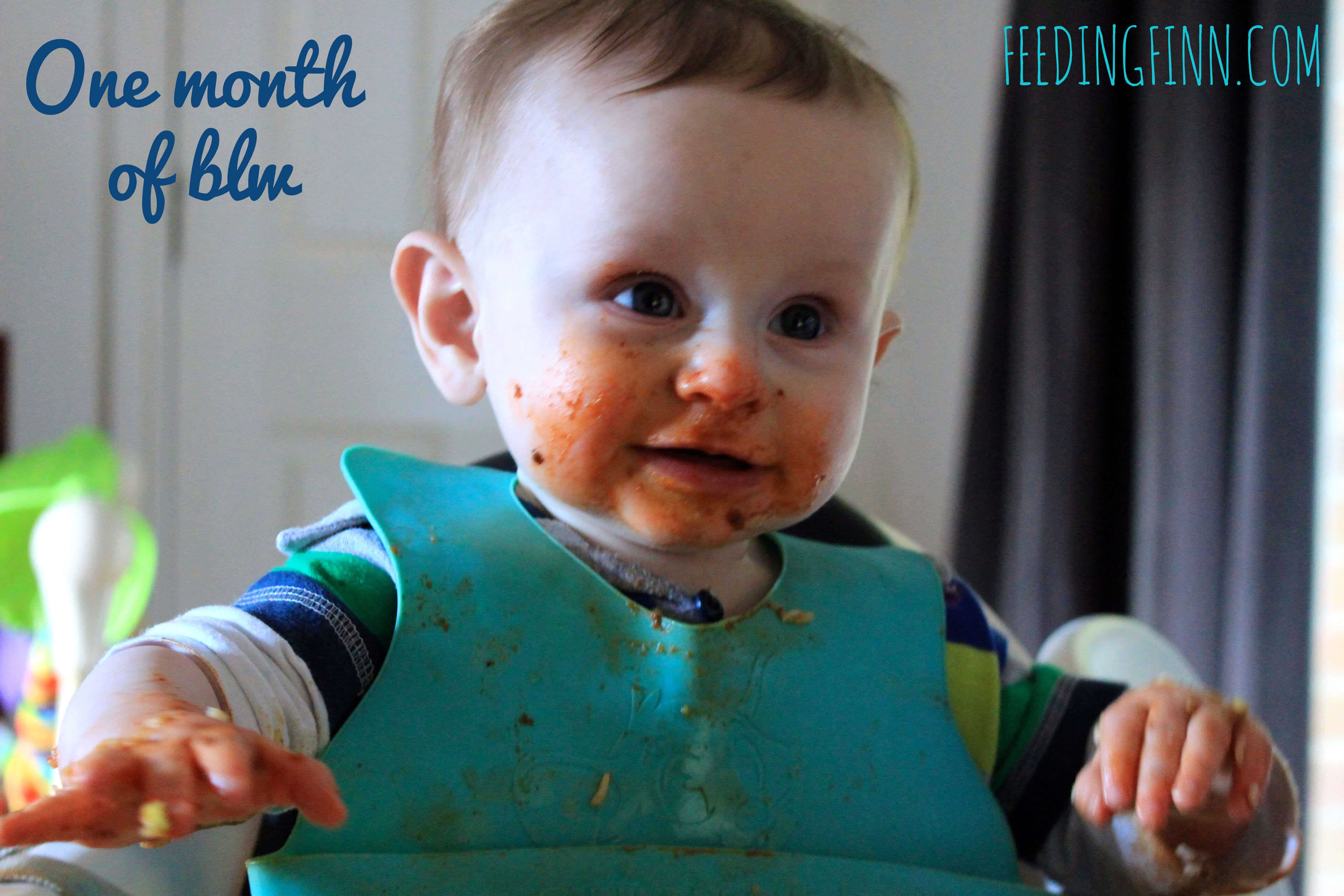 baby led weaning blw food inspiration for the first month