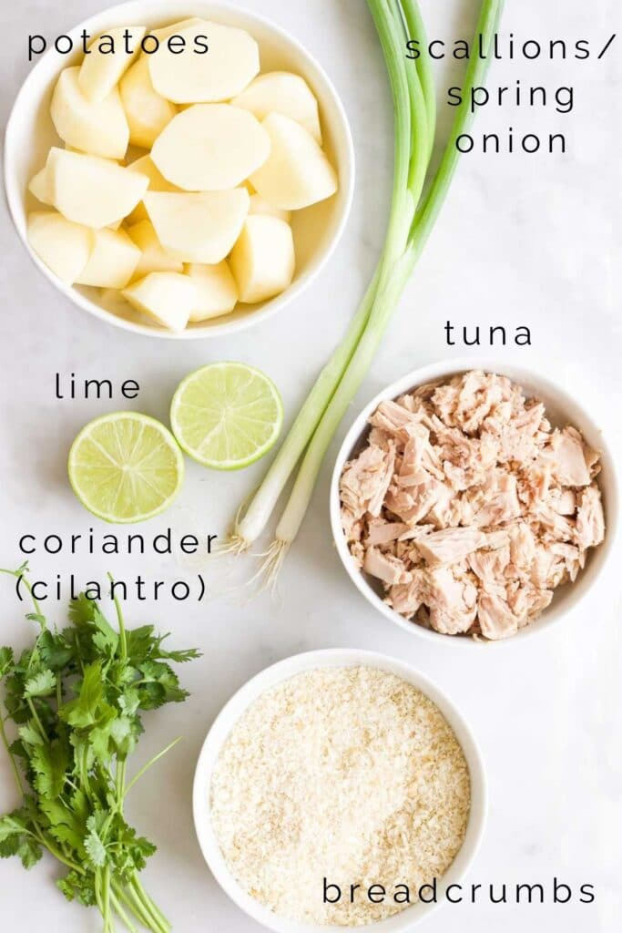 Flat Lay Shot of the Ingredients Needed to Make Tuna Fish Cakes
