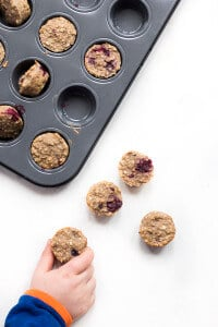 Fruity Oat Breakfast Bites