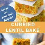 Curried Lentil Bake Long Pin