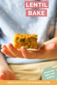 Lentil bake short pin