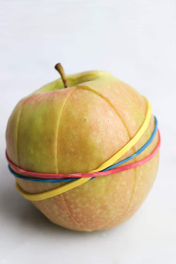 Apple Cut in Segments and Held Together with Elastic Band
