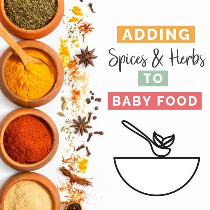 Picture of Spices with Baby Bowl with Title Adding Spices and Herbs to Baby Food