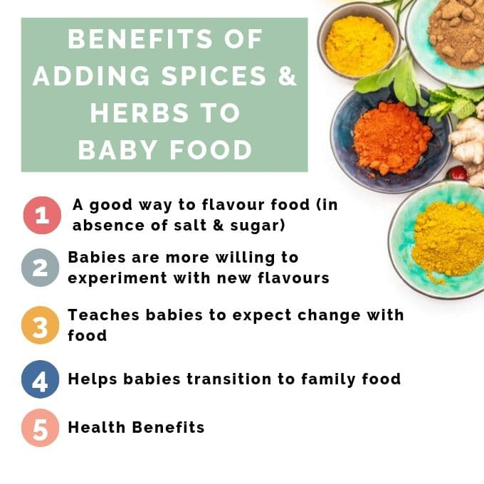 Picture of Spices Next to The Reasons Spices and Herbs Should Be Introduced to Babies