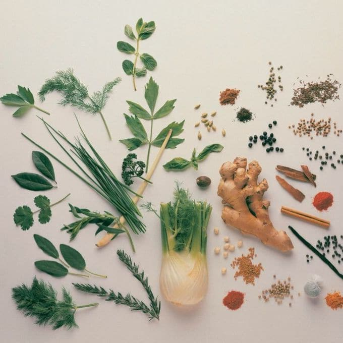 Top Down Picture of a Range of Herbs and Spices