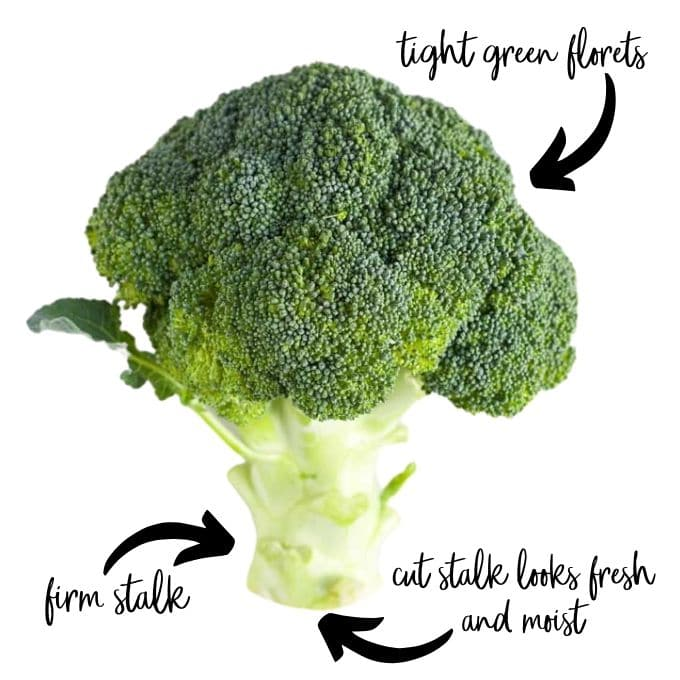 Image of a Fresh Broccoli