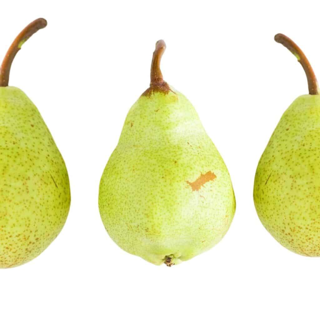 Picture of 3 Pears