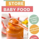 Pinterest Pin with Text How to Safely Store Baby Food