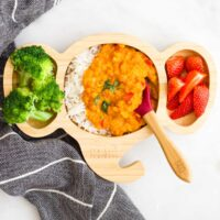 Red Lentil Curry Served with Rice, Broccoli and Strawberries on Toddler / Baby Elephant Shaped Plate