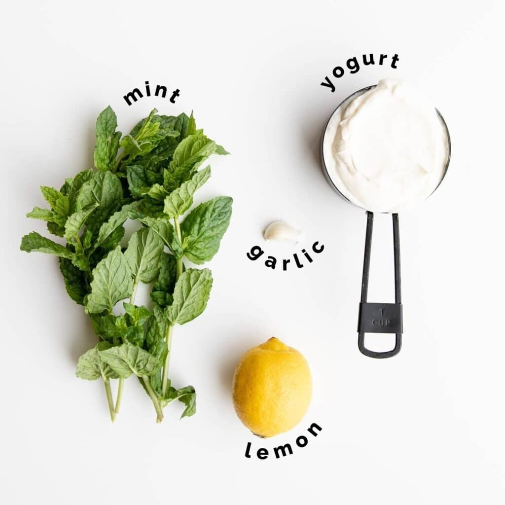 Flat Lay of Ingredients Needed to Make Mint Yogurt Sauce (Labelled)